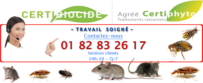 Nuisibles Houilles